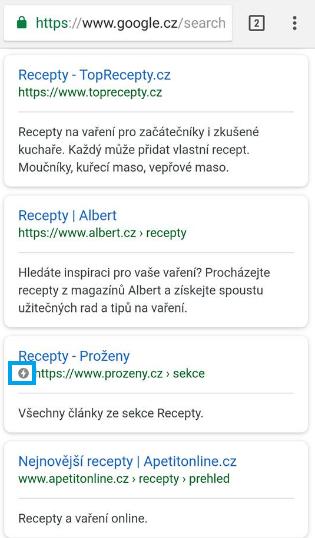 AMP stránka ve výsledcích vyhledávání